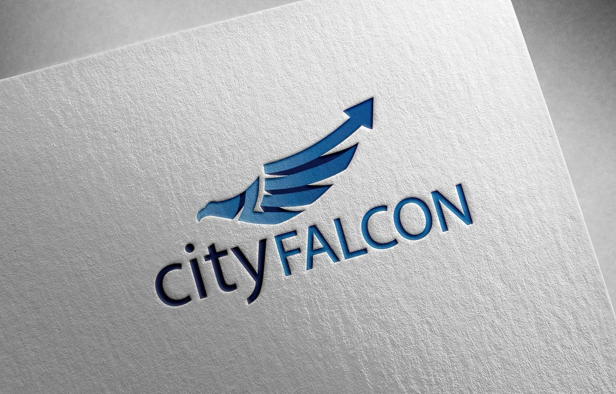 CityFALCON Soars Past Initial Seedrs' Equity Crowdfunding Goal